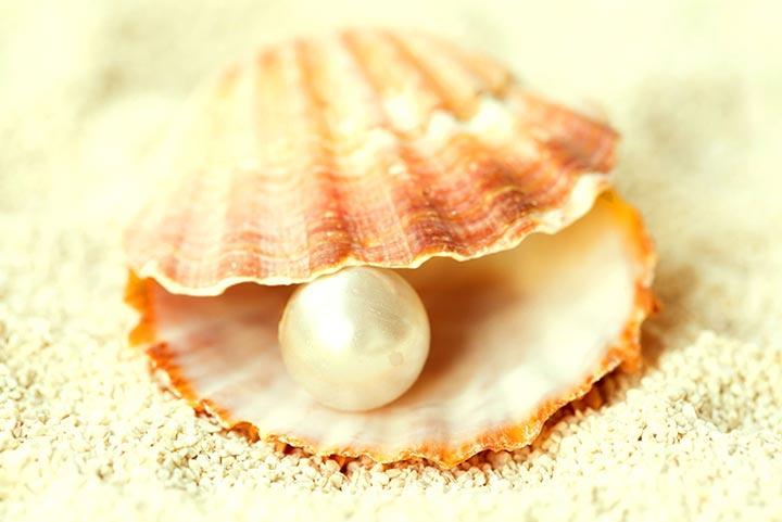 Perle in der Muschel